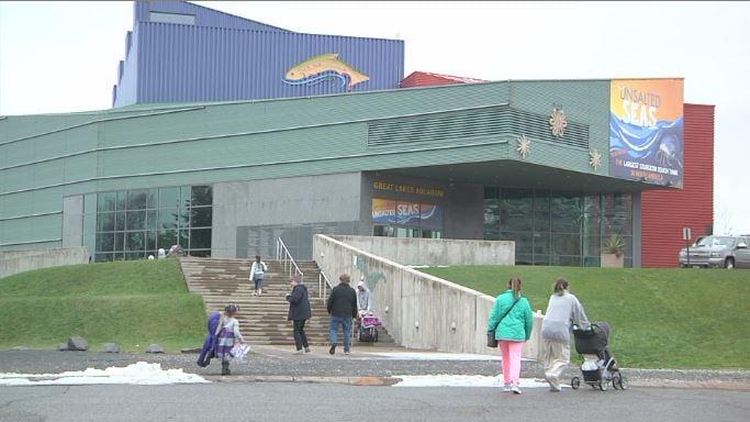 Great Lakes Aquarium Offers Free Thanksgiving Passes